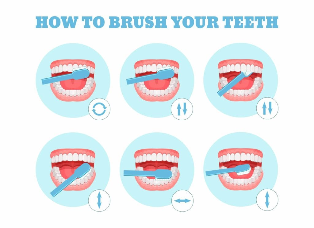 Diagram on how to brush teeth